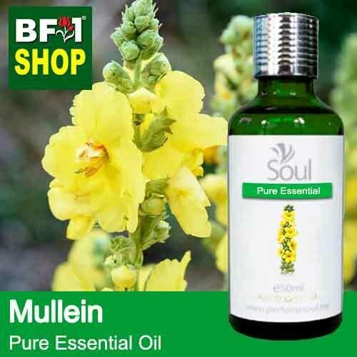 Pure Essential Oil (EO) - Mullein Essential Oil - 50ml