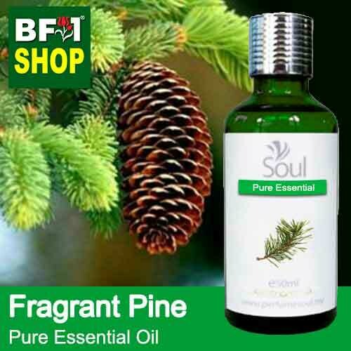 Pure Essential Oil (EO) - Pine - Fragrant Pine Essential Oil - 50ml