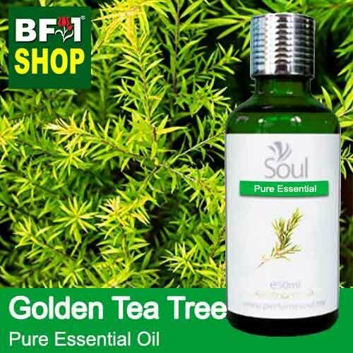 Pure Essential Oil (EO) - Tea Tree - Golden Tea Tree Essential Oil - 50ml