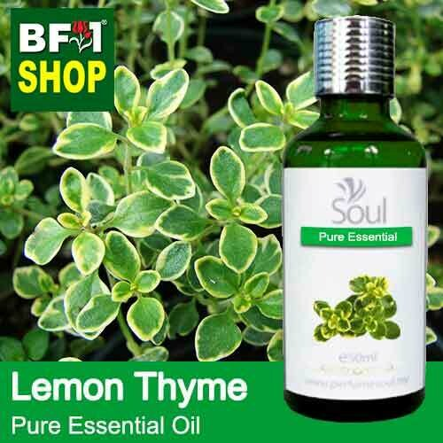 Pure Essential Oil (EO) - Thyme - Lemon Thyme Essential Oil - 50ml