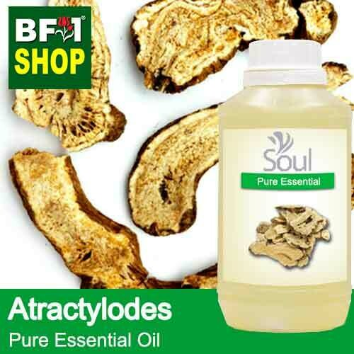 Pure Essential Oil (EO) - Atractylodes Essential Oil - 500ml