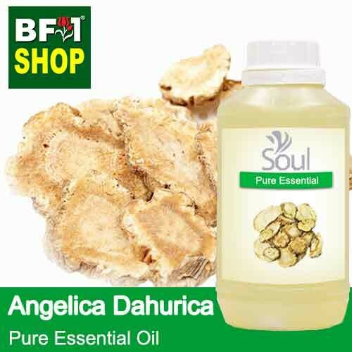 Pure Essential Oil (EO) - Angelica Dahurica Essential Oil - 500ml