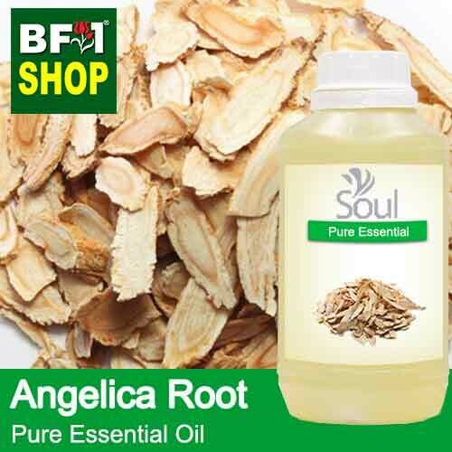Pure Essential Oil (EO) - Angelica Root Essential Oil - 500ml