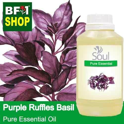 Pure Essential Oil (EO) - Basil - Purple Ruffles Basil Essential Oil - 500ml