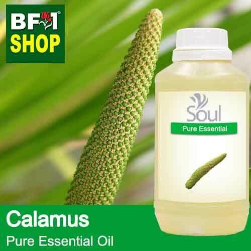 Pure Essential Oil (EO) - Calamus Essential Oil - 500ml