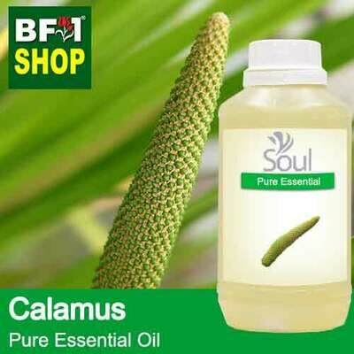 Pure Essential Oil (EO) - Calamus Essential Oil - 500ml