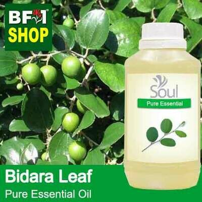 Pure Essential Oil (EO) - Bidara Leaf (Zizyphus Mauritiana ) Essential Oil - 500ml