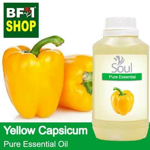 Pure Essential Oil (EO) - Capsicum Yellow Essential Oil - 500ml