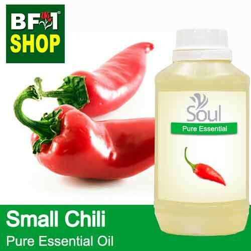Pure Essential Oil (EO) - Chili - Small Chili Essential Oil - 500ml