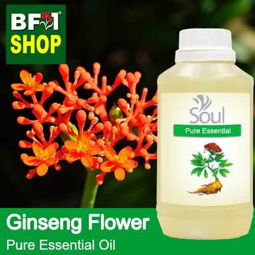 Pure Essential Oil (EO) - Ginseng Flower Essential Oil - 500ml