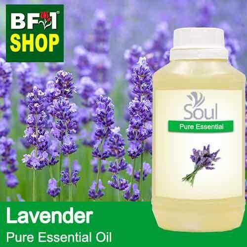 Pure Essential Oil (EO) - Lavender Essential Oil - 500ml