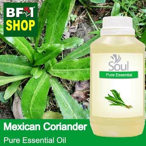 Pure Essential Oil (EO) - Mexican Coriander ( Eryngium Foetidum ) Essential Oil - 500ml