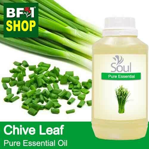 Pure Essential Oil (EO) - Chive Leaf ( Allium schoenoprasum L ) Essential Oil - 500ml