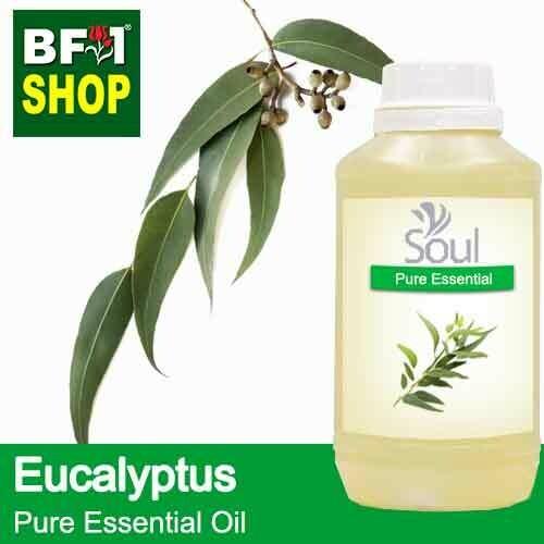 Pure Essential Oil (EO) - Eucalyptus Essential Oil - 500ml