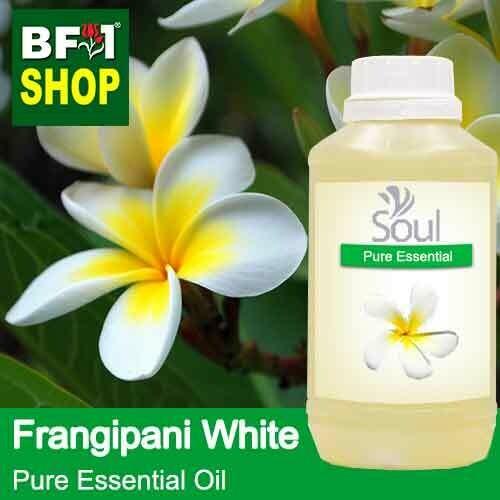 Pure Essential Oil (EO) - Frangipani White Essential Oil - 500ml