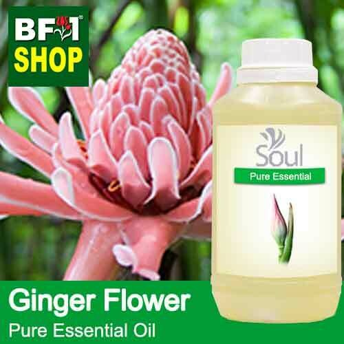Pure Essential Oil (EO) - Ginger Flower Essential Oil - 500ml