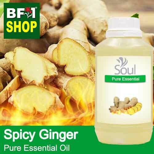 Pure Essential Oil (EO) - Ginger - Spicy Ginger Essential Oil - 500ml