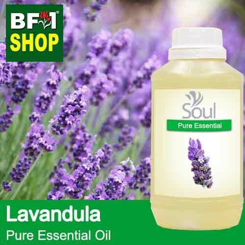Pure Essential Oil (EO) - Lavandula Dentata Essential Oil - 500ml