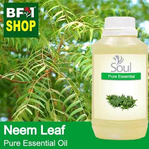Pure Essential Oil (EO) - Neem Leaf Essential Oil - 500ml