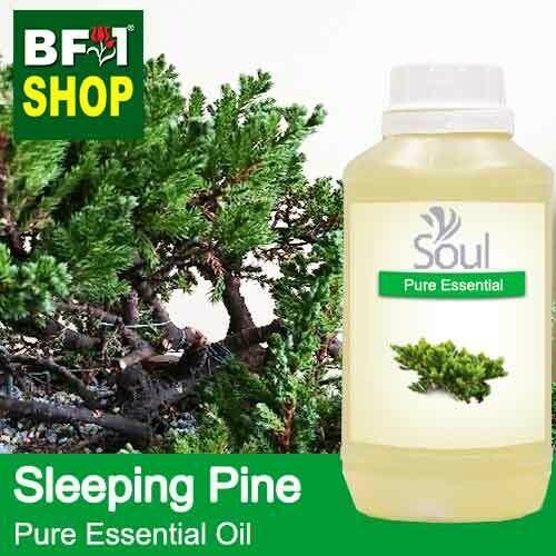 Pure Essential Oil (EO) - Pine - Sleeping Pine Essential Oil - 500ml