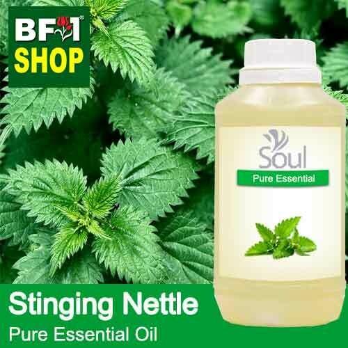 Pure Essential Oil (EO) - Stinging Nettle Essential Oil - 500ml