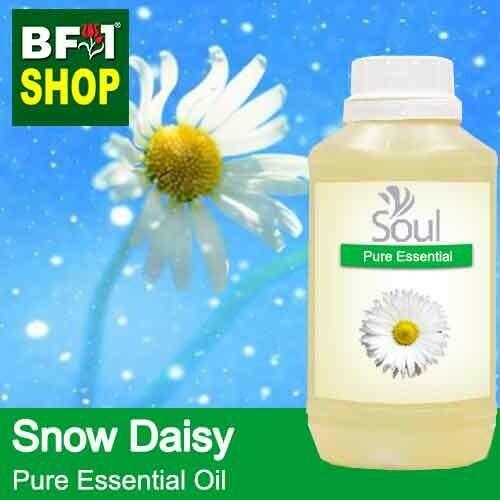 Pure Essential Oil (EO) - Snow Daisy Essential Oil - 500ml