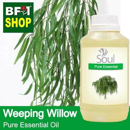 Pure Essential Oil (EO) - Weeping Willow Essential Oil - 500ml