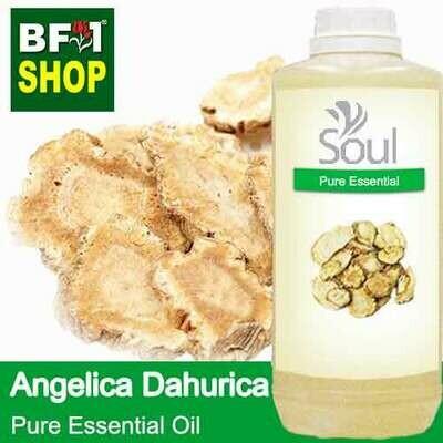 Pure Essential Oil (EO) - Angelica Dahurica Essential Oil - 1L
