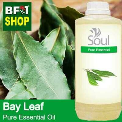 Pure Essential Oil (EO) - Bay Leaf Essential Oil - 1L