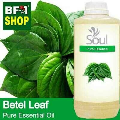 Pure Essential Oil (EO) - Betel Leaf ( Daun Sireh ) Essential Oil - 1L