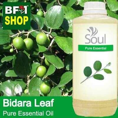 Pure Essential Oil (EO) - Bidara Leaf (Zizyphus Mauritiana ) Essential Oil - 1L
