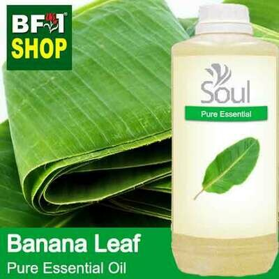 Pure Essential Oil (EO) - Banana Leaf Essential Oil - 1L