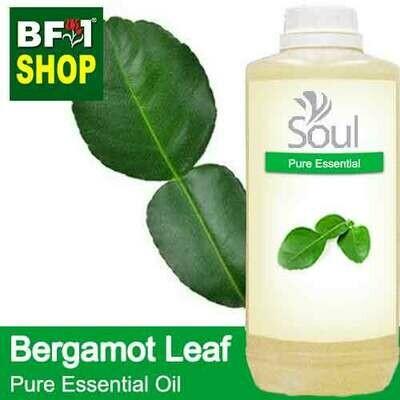 Pure Essential Oil (EO) - Bergamot Leaf Essential Oil - 1L