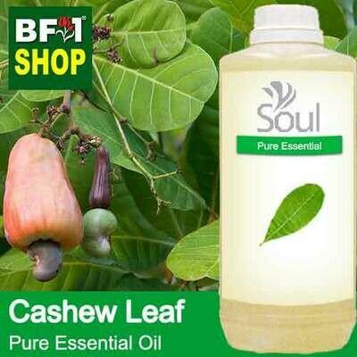 Pure Essential Oil (EO) - Cashew Leaf ( Anacardium Occidentale ) Essential Oil - 1L