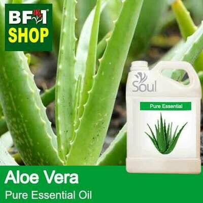 Pure Essential Oil (EO) - Aloe Vera Essential Oil - 5L