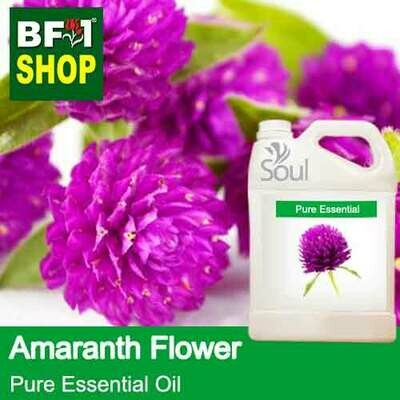 Pure Essential Oil (EO) - Amaranth Flower Essential Oil - 5L