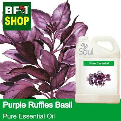 Pure Essential Oil (EO) - Basil - Purple Ruffles Basil Essential Oil - 5L
