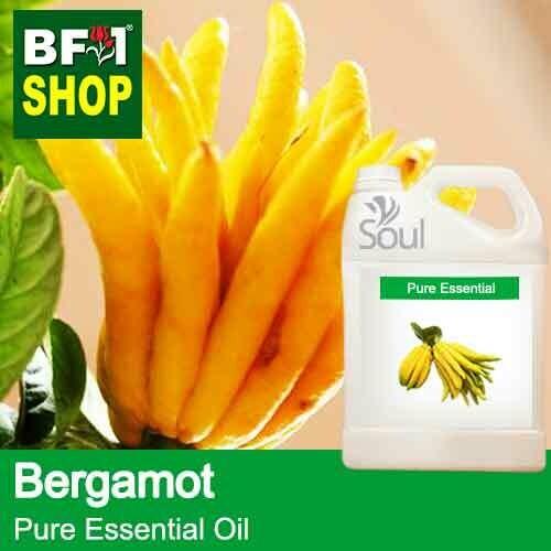Pure Essential Oil (EO) - Bergamot Essential Oil - 5L