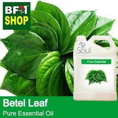 Pure Essential Oil (EO) - Betel Leaf ( Daun Sireh ) Essential Oil - 5L