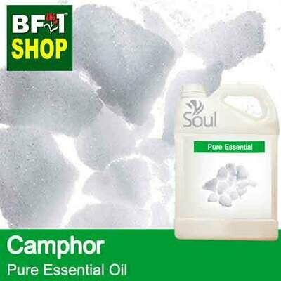 Pure Essential Oil (EO) - Camphor Essential Oil - 5L
