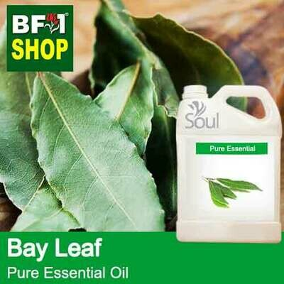 Pure Essential Oil (EO) - Bay Leaf Essential Oil - 5L
