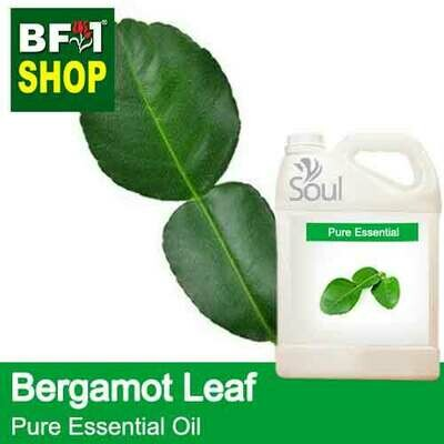 Pure Essential Oil (EO) - Bergamot Leaf Essential Oil - 5L