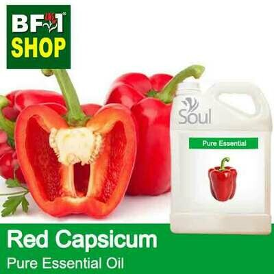 Pure Essential Oil (EO) - Capsicum Red Essential Oil - 5L