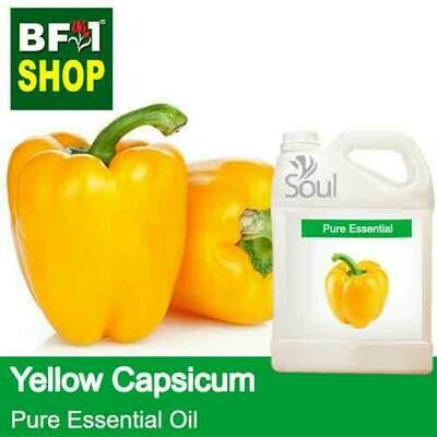 Pure Essential Oil (EO) - Capsicum Yellow Essential Oil - 5L