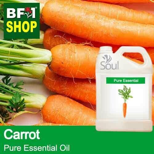 Pure Essential Oil (EO) - Carrot Essential Oil - 5L