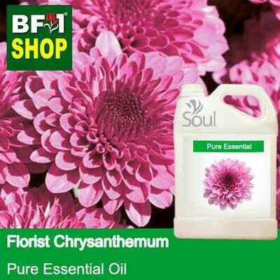 Pure Essential Oil (EO) - Chrysanthemum - Florists Chrysanthemum Essential Oil - 5L