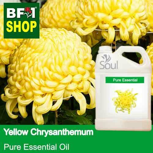 Pure Essential Oil (EO) - Chrysanthemum - Yellow Chrysanthemum Essential Oil - 5L