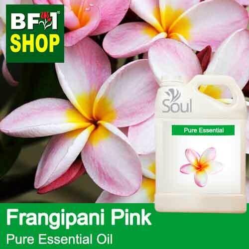 Pure Essential Oil (EO) - Frangipani Pink Essential Oil - 5L