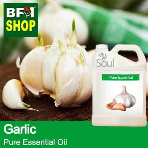 Pure Essential Oil (EO) - Garlic Essential Oil - 5L