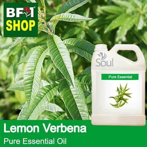 Pure Essential Oil (EO) - Lemon Verbena Essential Oil - 5L